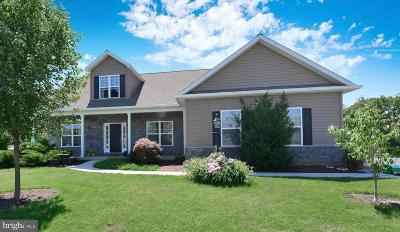 Mechanicsburg Single Family Home For Sale: 47 Franklin Drive