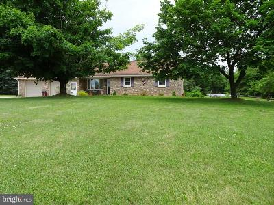 Newville Single Family Home For Sale: 443 Steelstown Road