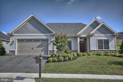 Mechanicsburg Single Family Home For Sale: 933 Tolman Street
