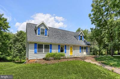 Cumberland County Single Family Home For Sale: 23 Watson Drive