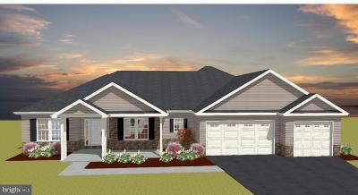 Mechanicsburg Single Family Home For Sale: 819 Genevieve Drive