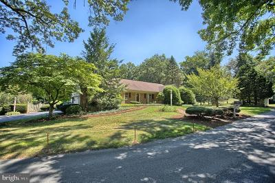Lemoyne Single Family Home For Sale: 20 W Lawn Circle