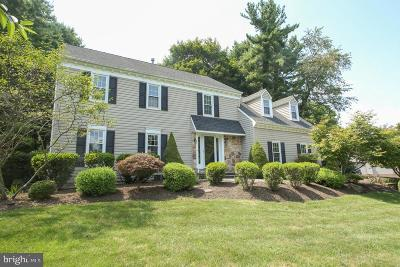 Phoenixville Single Family Home For Sale: 609 Waterfall Way