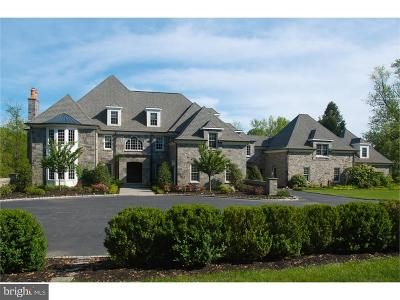 Chadds Ford Single Family Home For Sale: 141 Center Mill Road