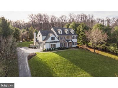 Chester Springs Single Family Home For Sale: 1150 Yellow Springs Road