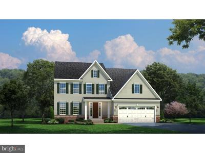 Single Family Home For Sale: 1029 Preserve Lane
