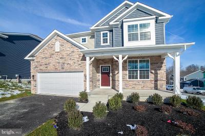 Downingtown Single Family Home For Sale: 71 Tucker Drive #LOT 31