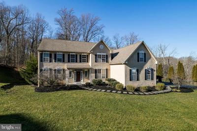 Downingtown Single Family Home For Sale: 347 Sterling Lane
