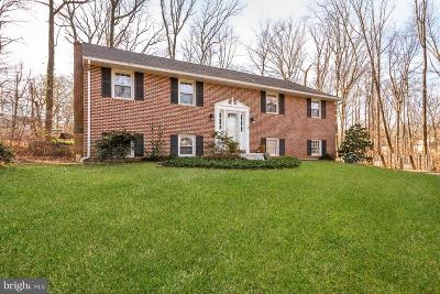 Chester County Single Family Home For Sale: 4 Ruth Lane