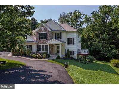Chester County Single Family Home For Sale: 133 Landenberg Road