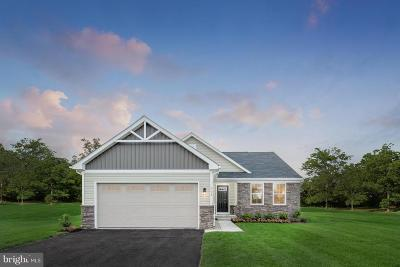 Coatesville Single Family Home For Sale: 110 Truman Street