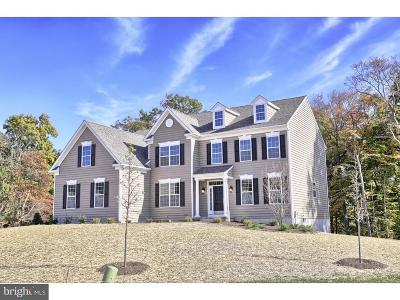 Downingtown Single Family Home Active Under Contract: 41 Emma Court