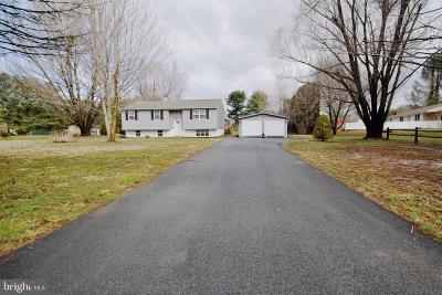 Coatesville Single Family Home For Sale: 207 Lafayette Road