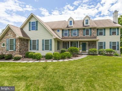 Chester County Single Family Home For Sale: 15 Rico Circle