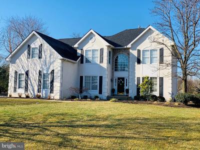 Exton Single Family Home For Sale: 308 Horizon Court