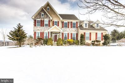Coatesville Single Family Home Under Contract: 123 Bridle Path Lane