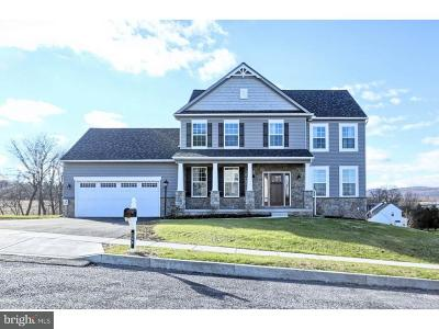 Chester County Single Family Home For Sale: 8 Pelham Drive