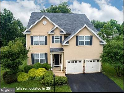 Chester Springs Single Family Home For Sale: 1305 Garman Drive