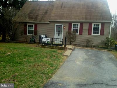 Downingtown Single Family Home For Sale: 1214 New Hampshire Lane