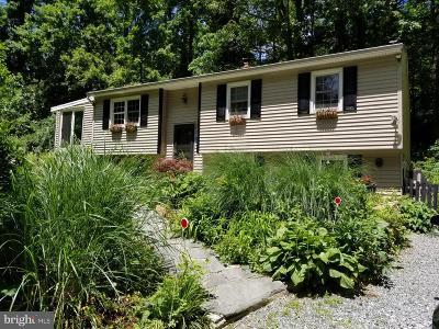 Single Family Home For Sale: 2002 Conestoga Road