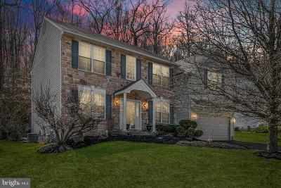 Chester County Single Family Home For Sale: 828 Windridge Lane