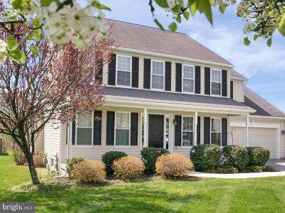 Oxford Single Family Home For Sale: 117 Ponds View Drive