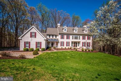 Chester County Single Family Home For Sale: 120 Shadestone Way