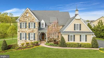 Chester County Single Family Home For Sale: 712 Shagbark Drive