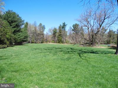Residential Lots & Land For Sale: 255 Lapp Rd