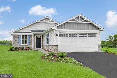 Coatesville Single Family Home For Sale: 135 N Harner Boulevard