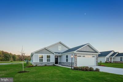 Coatesville Single Family Home For Sale: 138 N Harner Boulevard