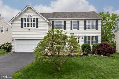 Phoenixville Single Family Home For Sale: 820 Rhinehart Lane
