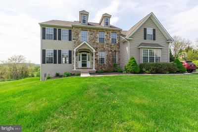Phoenixville Single Family Home For Sale: 309 Valley Hunt Drive