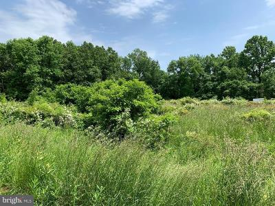 Coatesville Residential Lots & Land For Sale: 172 Union #172 UNIO