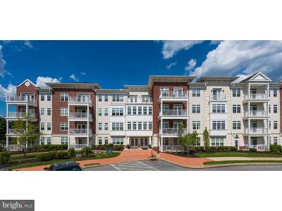 Chester County, Delaware County Condo For Sale: 121 Gilpin
