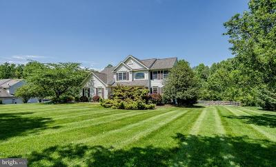 Chester County Single Family Home For Sale: 51 Sycamore Lane
