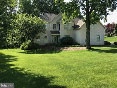 Downingtown Single Family Home For Sale: 1013 Welsh Ayres Way