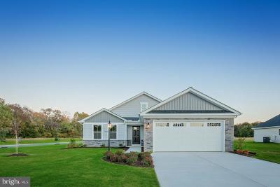 Coatesville Single Family Home For Sale: 97 N Harner Boulevard