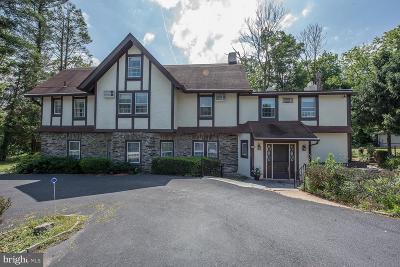Berwyn Single Family Home For Sale: 211 Bair Road