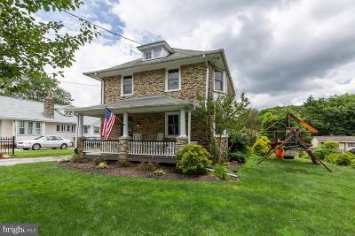 Chester County Single Family Home For Sale: 29 Leopard Road