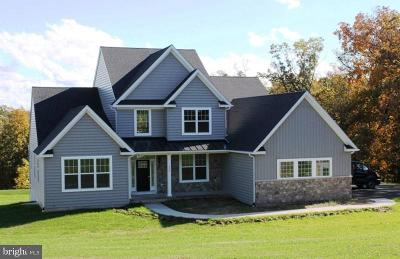 Chester County Single Family Home For Sale: 917 Ethan Allen Road