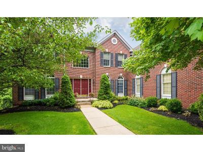 Phoenixville Single Family Home For Sale: 125 Shelbourne Lane