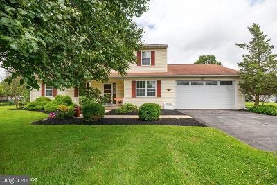 Honey Brook Single Family Home For Sale: 2035 Horseshoe Pike