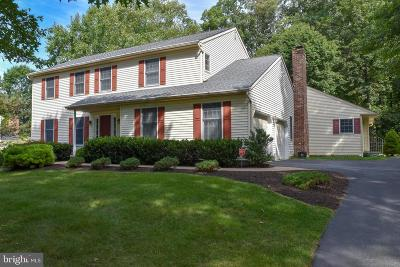 Downingtown Single Family Home For Sale: 416 Creekside Drive
