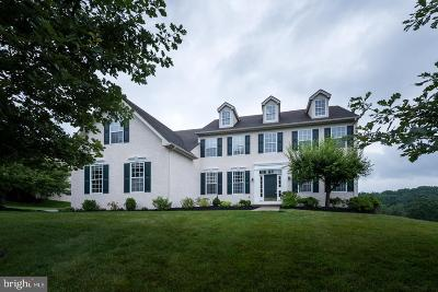 Downingtown Single Family Home For Sale: 343 Sterling Lane