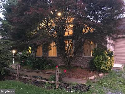 Honey Brook Single Family Home For Sale: 380 Grieson Road