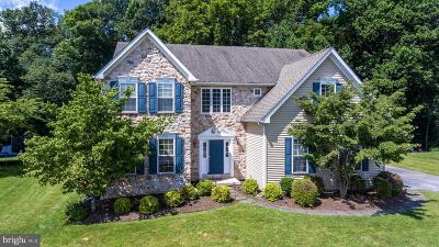 Downingtown Single Family Home For Sale: 238 Ferndale Lane