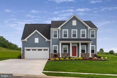 Single Family Home For Sale: 1010 Smithfield Lane