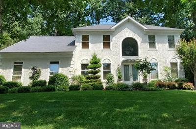 Downingtown Single Family Home For Sale: 106 Patrick Henry Drive