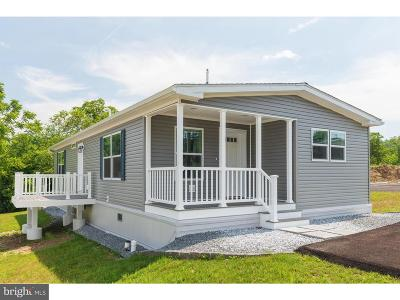 Downingtown Single Family Home For Sale: 305 W Uwchlan Ave #LOT 76